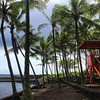 Puna Big Island Hawaii : 