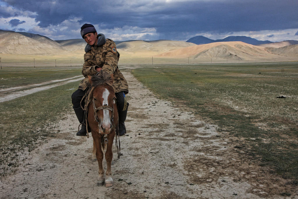 Boy on his horse herding animals in Western Mongolia